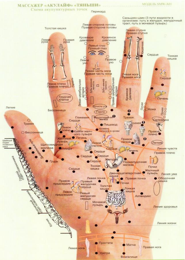 Прибор Акулайф Тяньши Схема акупунктурных точек на руке человека фото