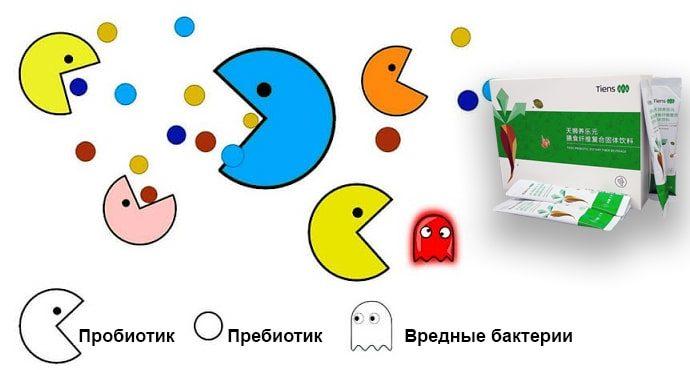 Для восстановления микрофлоры нам нужны пробиотики и пребиотики Тяньши - tiens5.com.ua