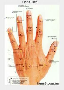 Акупунктурные точки на руке фото