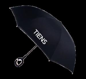 Зонт Тяньши фото